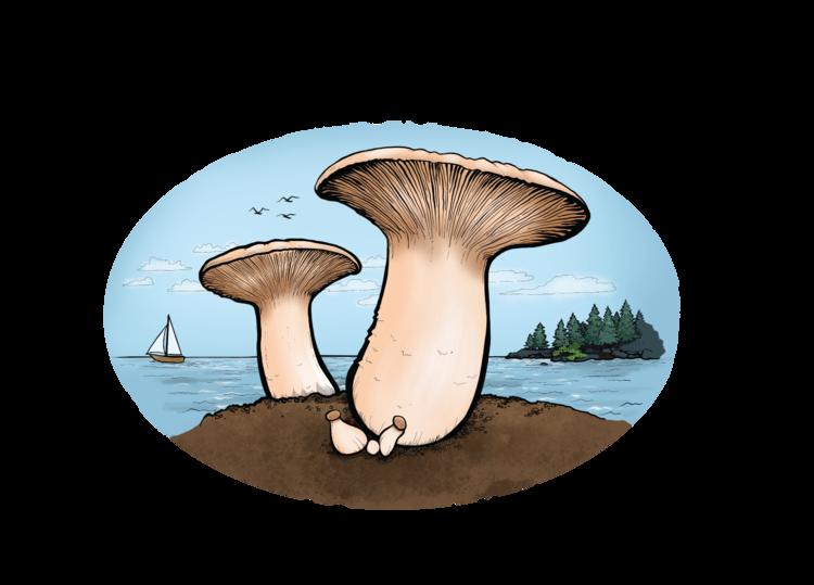 Island Mushroom Company