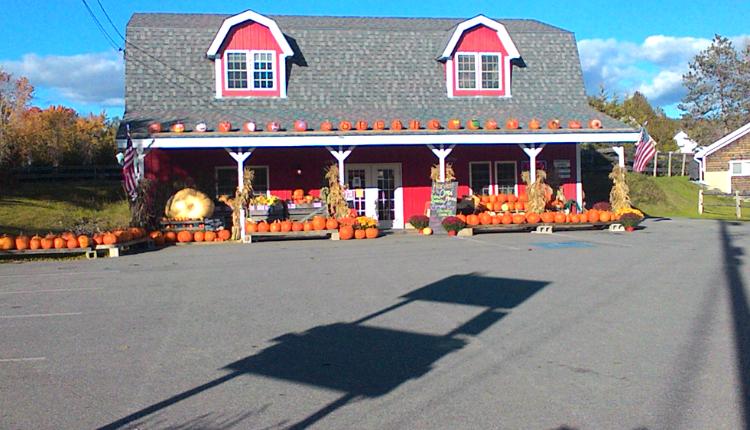 Spear's Vegetable Farm