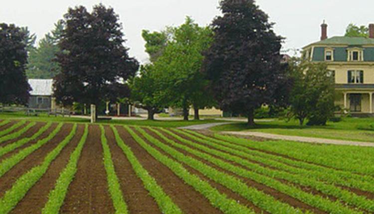 Weston's Farm LLC